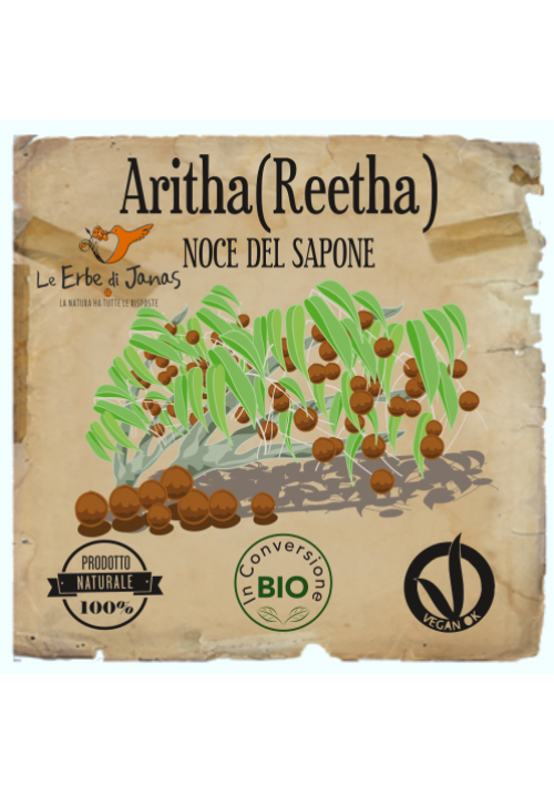 Aritha (Reetha) - Noce del Sapone