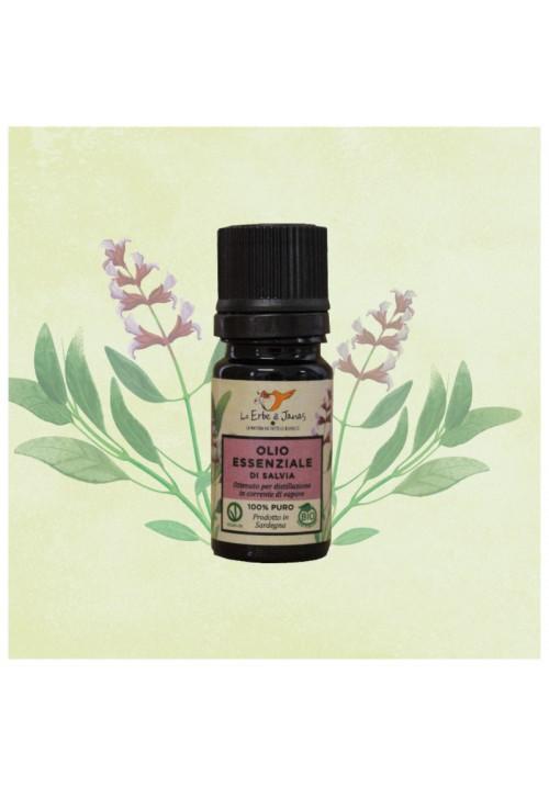 Olio Essenziale di Salvia BIO (Salvia officinalis)